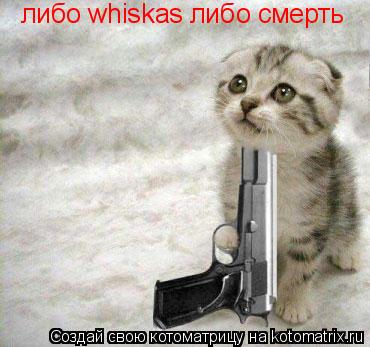 Котоматрица: либо whiskas либо смерть