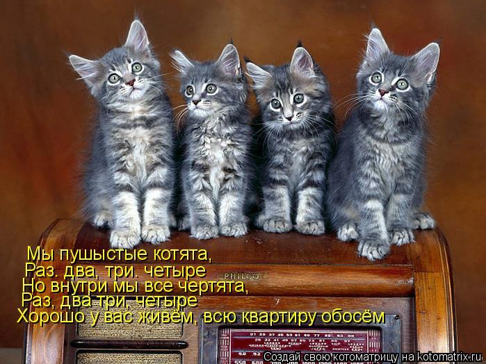 Котоматрица: Мы пушыстые котята, Раз. два, три. четыре Но внутри мы все чертята, Раз, два три, четыре Хорошо у вас живём, всю квартиру обосём