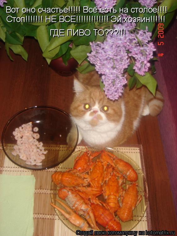 Котоматрица: Вот оно счастье!!!!! Всё есть на столое!!!! Стоп!!!!!!! НЕ ВСЕ!!!!!!!!!!!!! Эй хозяин!!!!!!  ГДЕ ПИВО ТО???!!!