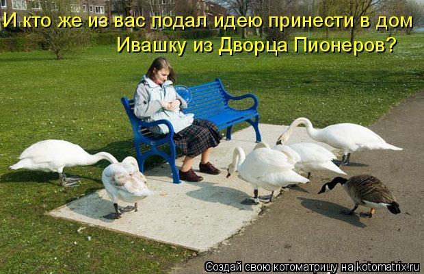 Котоматрица: И кто же из вас подал идею принести в дом Ивашку из Дворца Пионеров?