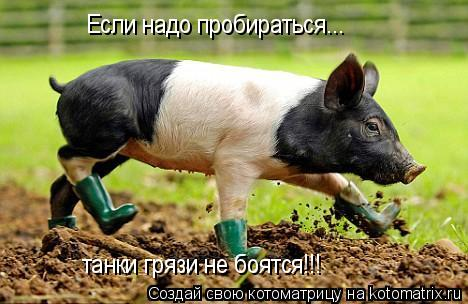 Котоматрица: Если надо пробираться... танки грязи не боятся!!!