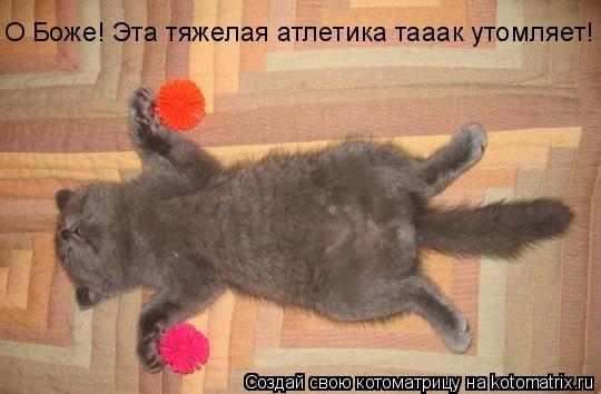 Котоматрица: О Боже! Эта тяжелая атлетика тааак утомляет!