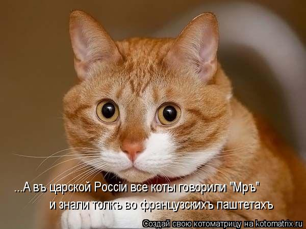 http://kotomatrix.ru/images/lolz/2009/11/19/410030.jpg