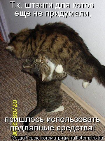 Котоматрица: Т.к. штанги для котов  еще не придумали, пришлось использовать подлапные средства!