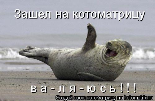 Котоматрица: Зашел на котоматрицу в а - л я - ю с ь ! ! !