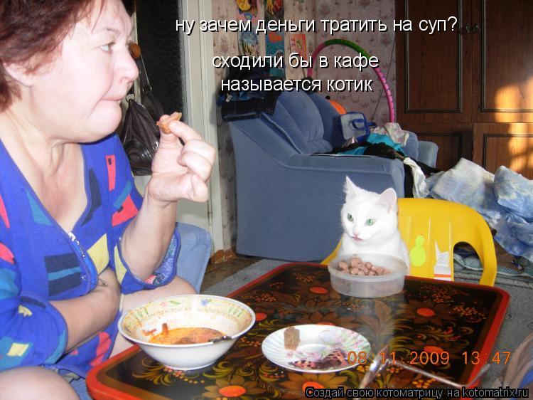 Котоматрица: ну зачем деньги тратить на суп? сходили бы в кафе сходили бы в кафе называется котик