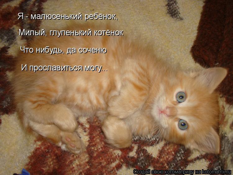 Котоматрица: Я - малюсенький ребёнок, Милый, глупенький котёнок Что нибудь, да соченю И прославиться могу...