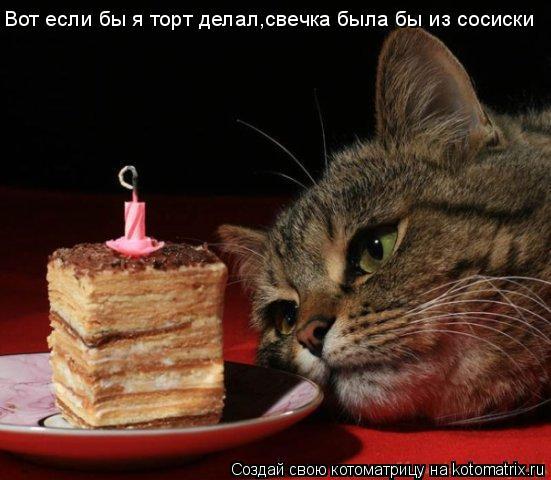 Котоматрица: Вот если бы я торт делал,свечка была бы из сосиски