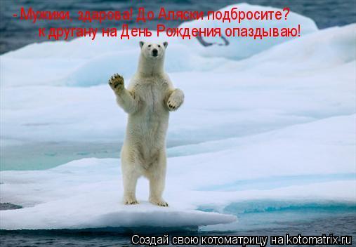 Котоматрица: - Мужики, здарова! До Аляски подбросите? к другану на День Рождения опаздываю!