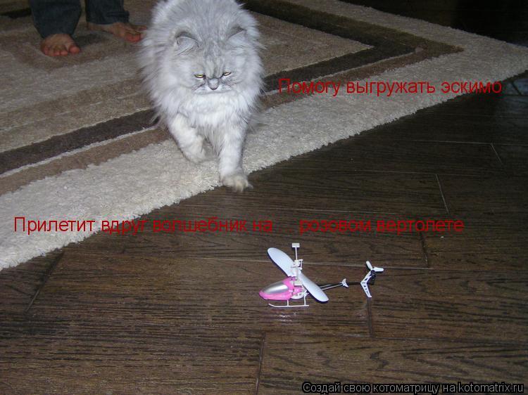 Котоматрица: Прилетит вдруг волшебник на ... розовом вертолете  Помогу выгружать эскимо