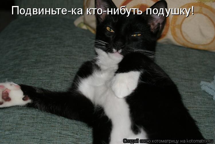 Котоматрица: Подвиньте-ка кто-нибуть подушку!