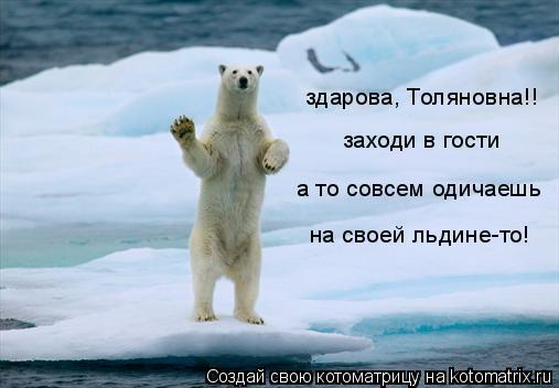 Котоматрица: здарова, Толяновна!! заходи в гости а то совсем одичаешь  на своей льдине-то!