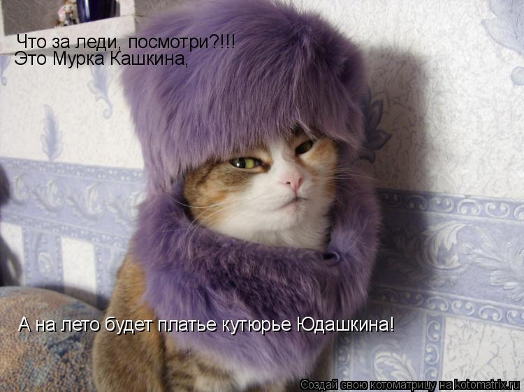 Котоматрица: Что за леди, посмотри?!!! Это Мурка Кашкина, А на лето будет платье кутюрье Юдашкина!