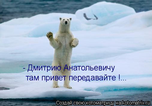Котоматрица: - Дмитрию Анатольевичу  там привет передавайте !...