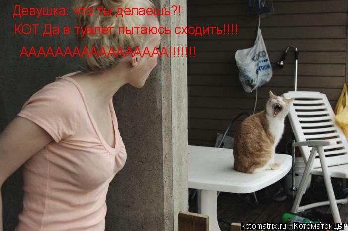 Котоматрица: Девушка: что ты делаешь?! КОТ:Да в туалет пытаюсь сходить!!!! ААААААААААААААААА!!!!!!!