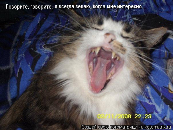 Котоматрица: Говорите, говорите, я всегда зеваю, когда мне интересно...