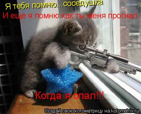 Котоматрица: Я тебя помню...соседушка И еще я помню как ты меня прогнал... Когда я спал!!!