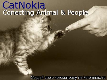 Котоматрица: CatNokia Conecting Animal & People