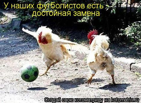 Котоматрица: У наших футболистов есть достойная замена