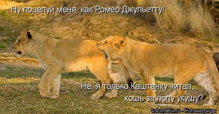 Поцелуй меня в попку фото 398-791
