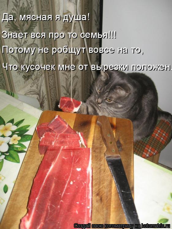 Котоматрица: Да, мясная я душа! Знает вся про то семья!!! Потому не робщут вовсе на то, Что кусочек мне от вырезки положен.
