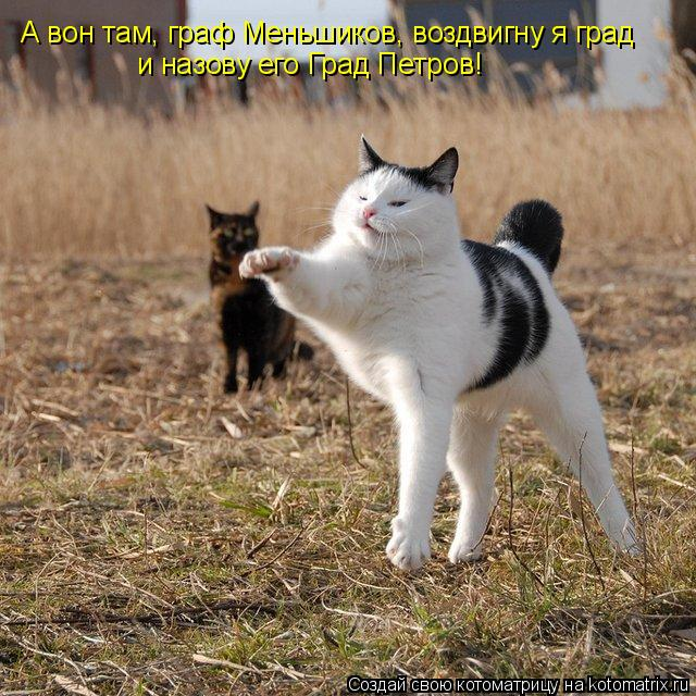 Котоматрица: А вон там, граф Меньшиков, воздвигну я град и назову его Град Петров!