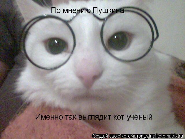 Котоматрица: По мнению Пушкина Именно так выглядит кот учёный