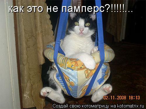 Котоматрица: как это не памперс?!!!!!...