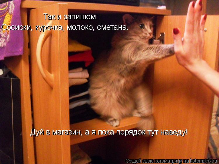 Котоматрица: Так и запишем: Сосиски, курочка, молоко, сметана. Дуй в магазин, а я пока порядок тут наведу!