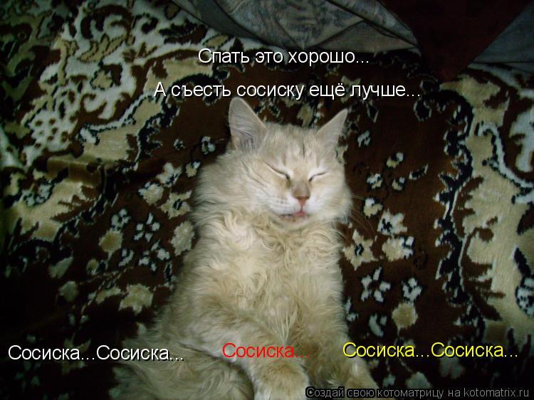 Котоматрица: Спать это хорошо... А съесть сосиску ещё лучше... Сосиска...Сосиска... Сосиска...Сосиска... Сосиска...