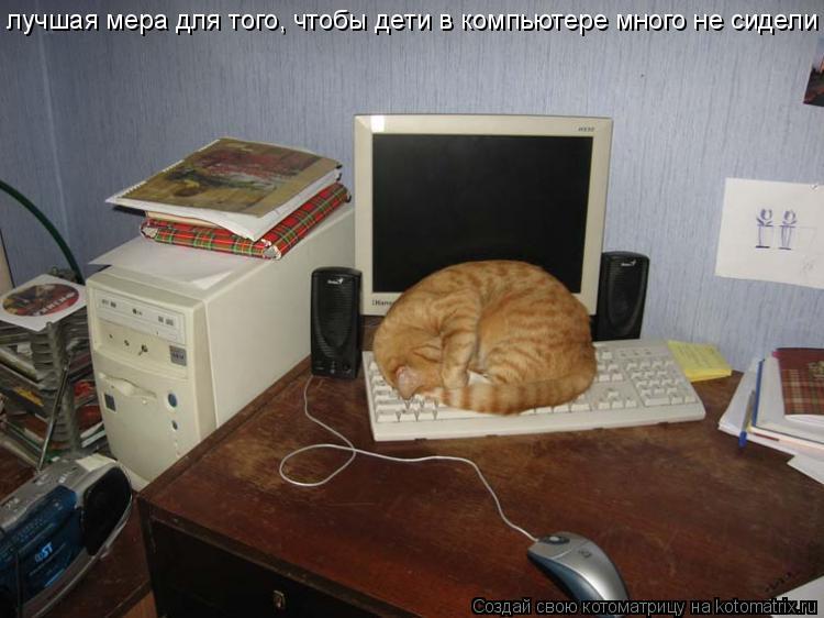 Котоматрица: лучшая мера для того, чтобы дети в компьютере много не сидели