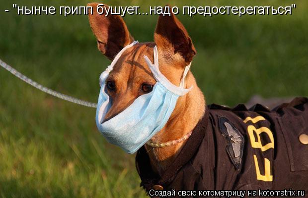 """Котоматрица: - """"нынче грипп бушует...надо предостерегаться"""""""