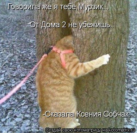 Котоматрица: От Дома 2 не убежишь.. Говорила же я тебе,Мурзик... -Сказала Ксения Собчак.