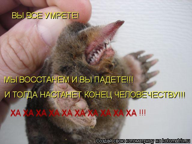 Котоматрица: ХА ХА ХА ХА ХА ХА ХА ХА ХА ХА  ХА ХА ХА ХА ХА ХА ХА ХА ХА ХА !!! ВЫ ВСЕ УМРЕТЕ! МЫ ВОССТАНЕМ И ВЫ ПАДЕТЕ!!! И ТОГДА НАСТАНЕТ КОНЕЦ ЧЕЛОВЕЧЕСТВУ!!!