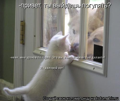Котоматрица: -привет, ты выйдешь погулять? -неее, мне уроков по горло. Это вы, лентяи, ничего не делаете! Я - деловой кот!