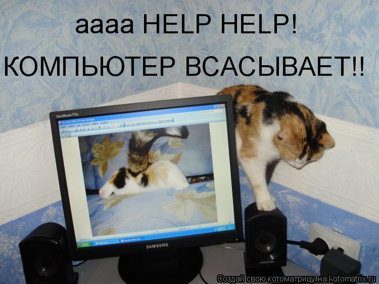 Котоматрица: аааа HELP HELP! КОМПЬЮТЕР ВСАСЫВАЕТ!!