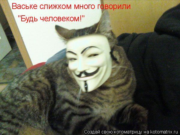 """Котоматрица: Ваське слижком много говорили """"Будь человеком!"""""""