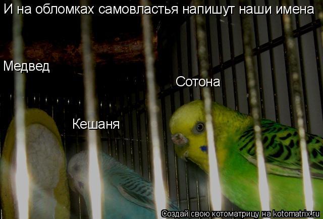 Котоматрица: И на обломках самовластья напишут наши имена Медвед Кешаня Сотона