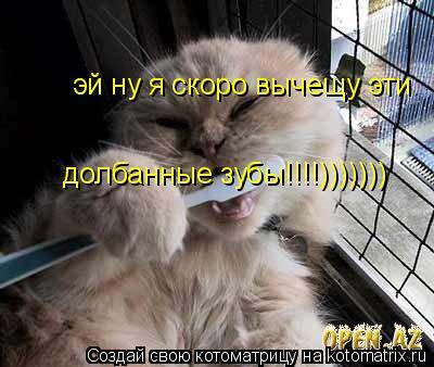 Котоматрица: эй ну я скоро вычищу эти  эй ну я скоро вычещу эй ну я скоро вычещу эти                                                        долбанные зубы!!!!)))))