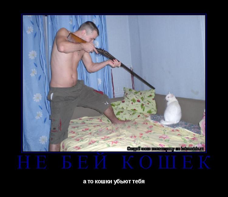 Котоматрица: Не бей кошек а то кошки убьют тебя