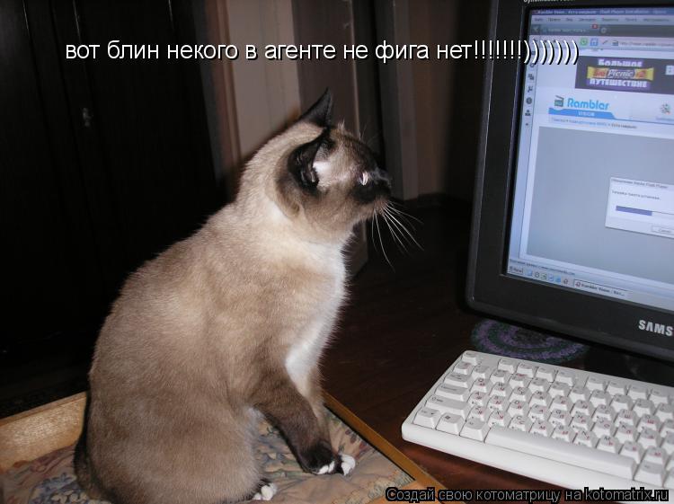 Котоматрица: вот блин некого в агенте не фига нет!!!!!!!)))))))