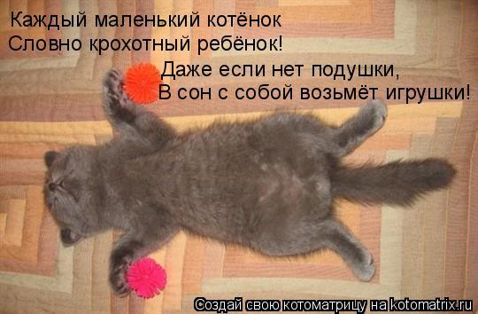 Котоматрица: Каждый маленький котёнок Словно крохотный ребёнок! Даже если нет подушки, В сон с собой возьмёт игрушки!