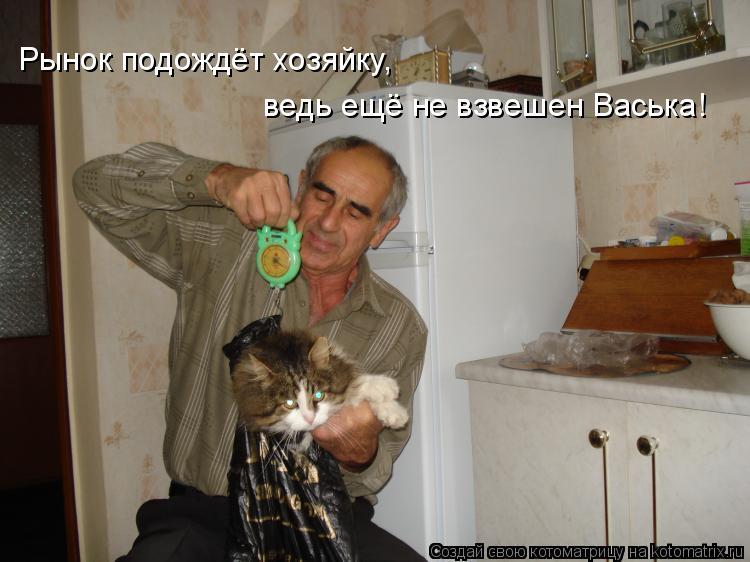 Котоматрица: Рынок подождёт хозяйку, ведь ещё не взвешен Васька!
