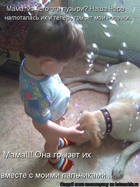 Котоматрица: Мама, из чего эти пузыри? Наша Чара наглоталась их и теперь грызет мои носочки... Мама!!! Она грызет их вместе с моими пальчиками...