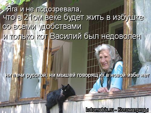 Котоматрица: Яга и не подозревала,  что в 21ом веке будет жить в избушке  со всеми удобствами и только кот Василий был недоволен ни печи русской, ни мышей г
