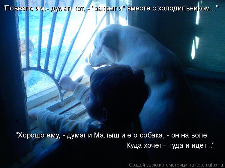 """Котоматрица: """"Хорошо ему, - думали Малыш и его собака, - он на воле... Куда хочет - туда и идет..."""" """"Повезло им,- думал кот, - """"закрыли"""" вместе с холодильником..."""""""