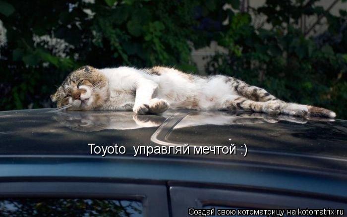 Котоматрица: Toyoto  управляй мечтой :)