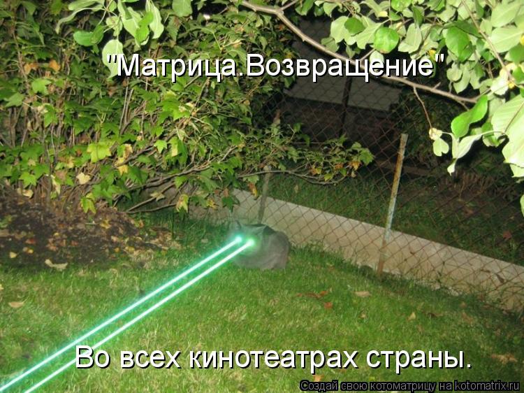 """Котоматрица: """"Матрица.Возвращение"""" Во всех кинотеатрах страны."""