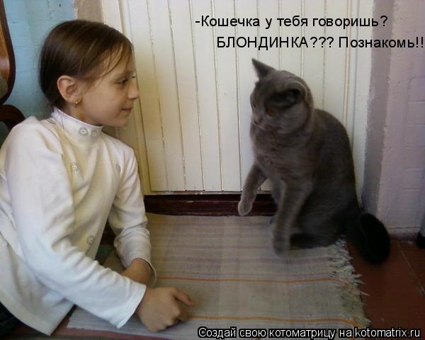 Котоматрица: -Кошечка у тебя говоришь?  БЛОНДИНКА??? Познакомь!!!