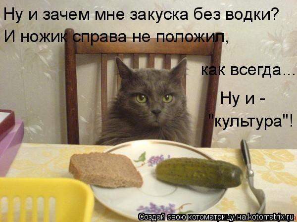 """Котоматрица: Ну и зачем мне закуска без водки? И ножик справа не положил,  как всегда... Ну и - """"культура""""!"""